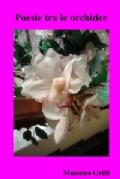 367505_copertina_frontcover_icon