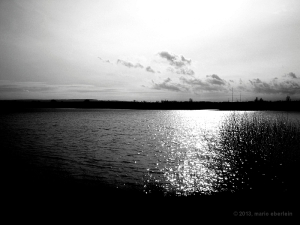 sea_landscape_bw_43