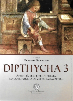 dipthycha-3_original-cover_front_900