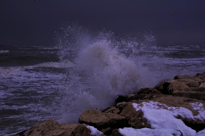 per_Il Mare, foto di Edoardo Pisani.jpg